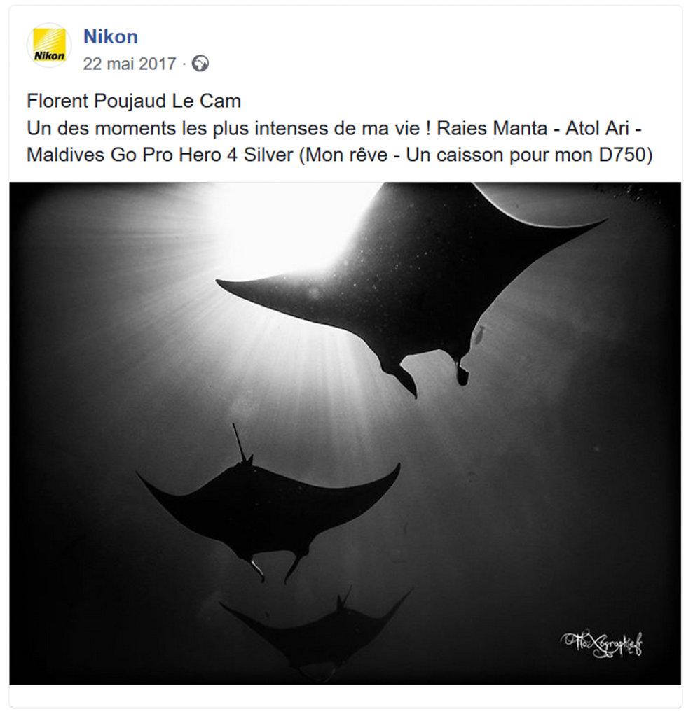 Nikon - Facebook Underwater Photography